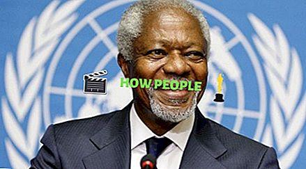 Titi Alakija Wiki (Kofi Annan's Ex-Wife) Umur, Biografi, Keluarga, Nilai Bersih, Kanak-kanak & Profil