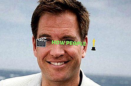 Michael Weatherly Größe, Alter, Ehefrau, Biografie, Vermögen, Familienstand