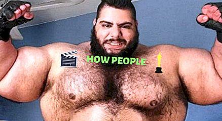 Sajad Gharibi (Iranian Hulk) Wiki, altezza, età, moglie, biografia e altro