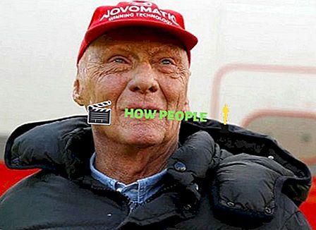 Christoph Lauda Wiki, Yaş (Niki Lauda'nın Oğlu) Biyo, Aile, Karısı ve Gerçekler