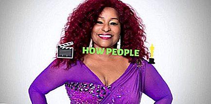 Chaka Khan Patrimonio netto: quanto è ricca la cantante americana Chaka Khan in realtà?